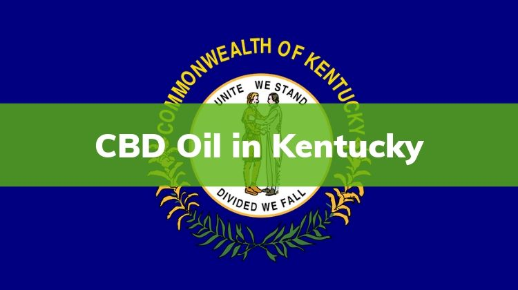 CBD Oil in Kentucky